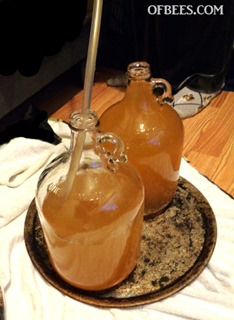 mead11
